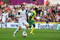 Swansea v Norwich, Liberty Stadium, Saturday 29th march 2014...<br /> <br /> <br /> <br /> Swansea's Leon Britton