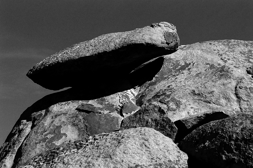 Joshua Tree, 35mm Ilford Delta Film