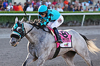 HALLANDALE BEACH, FL - JUNE 30: #8  X Y Jet (FL) with jockey Emisael Jaramillo on board, trained by Jorge Navarro, wins the Smile Sprint Handicap GIII Stakes at Gulfstream Park on June 30, 2018 in Hallandale Beach, Florida. (Photo by Liz Lamont/Eclipse Sportswire/Getty Images)