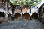 Historic courtyard with grapevines, Gonzalez Byass bodega, Jerez de la Frontera, Cadiz province, Spain