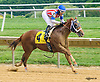 Northern Rail winning at Delaware Park on 8/6/16