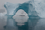 Polar Adventure Fine Art
