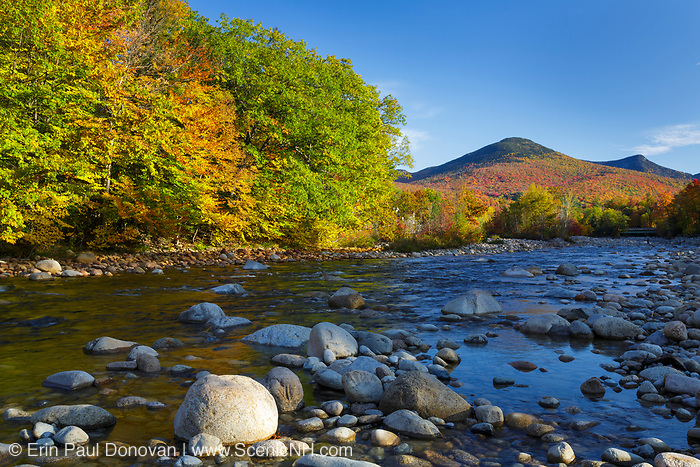 Autumn foliage on Big Coolidge Mountain from along the East Branch of the Pemigewasset River in Lincoln, New Hampshire on an autumn morning. This mountain was logged during the East Branch & Lincoln Railroad era (1893-1948).