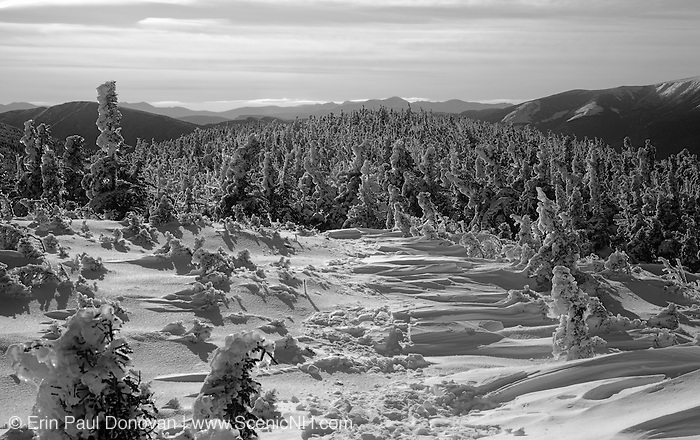 Appalachian Trail - Scenic view from along the Carter-Moriah Trail in winter conditions near Middle Carter Mountain in the White Mountains, New Hampshire USA