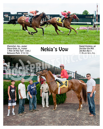 Nekia's Vow winning at Delaware Park on 7/11/13