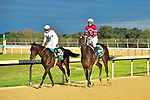 HOT SPRINGS, AR - APRIL 14: Oaklawn Park on April 14, 2018 in Hot Springs,Arkansas. #8 Quip with jockey Florent Geroux and #3 Tenfold with jockey Victor Espinoza (Photo by Ted McClenning/Eclipse Sportswire/Getty Images)