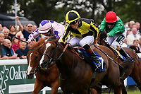 Winner of The Tony Brown's 75th Birthday Handicap, Dandy Flame (yellow/black cap) ridden by Finley Marsh and trained by Richard Hughes  during Ladies Evening Racing at Salisbury Racecourse on 15th July 2017