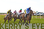 They're Off! At the North Kerry Harriers Point to Point Races on Saturday in Ballybunion.