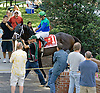 Love and Pride before The Obeah Stakes (gr3) at Delaware Park on 6/16/12