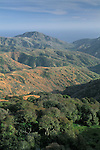 Overlooking Laguna Canyon, Santa Cruz Island, Channel Islands, California