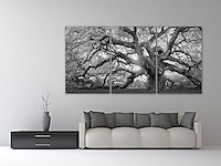 "A monochrome rendition of this majestic southern live oak near Charleston, SC. A mosaic arrangement of three prints displayed as a triptych (photograph is divided into three separate panels hung 1"" apart)"