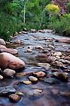 Bright Angel Creek, sunset