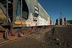 A graffiti painted freight train is parked by a grain hopper along side the rail tracks in the American west.