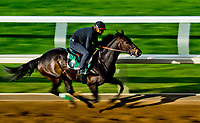 LEXINGTON, KENTUCKY - APRIL 08: on Bluegrass Stakes Day at Keeneland Race Course on April 8, 2017 in Lexington, Kentucky. (Photo by Scott Serio/Eclipse Sportswire/Getty Images)