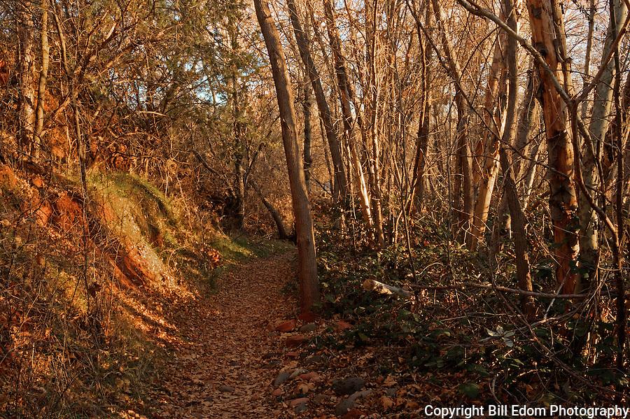 Oak Creek Pathway in Red Rock State Park near Sedona, Arizona.