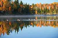 &quot;Fall Paddlers&quot;<br />