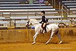 Mariposa Fair English  Riders