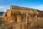 Gallatin County, MT: Evening light rakes across stacked hay bales