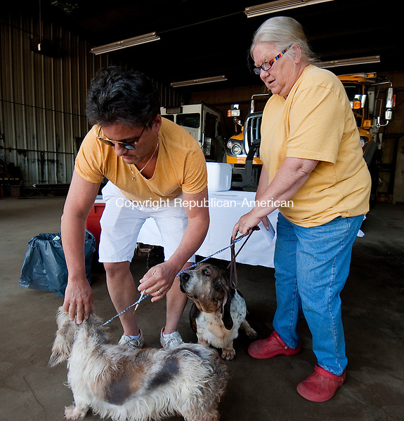 SOUTHBURY, CT--060715JS03-   Dr. Joe Ross of the Southbury Veterinary Hospital, administers vaccines to dogs Dixie and Dora, owned by Barbara Horvath of Southbury during the low-cost rabies clinic Sunday at the Southbury Town Garage. The event was sponsored by the Pomperaug District Department of Health and the Southbury Veterinary Hospital. Also, a reminder that dog licenses are due in June. <br /> Jim Shannon Republican-American