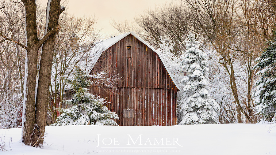 Red barn nestled amongst trees in fresh snow.