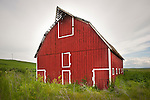 Red wooden barn in the green hills of the Palouse of Washington.