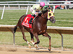 July 12, 2014: Belle Gallantey, Jose Ortiz up, wins the Grade I Delaware Handicap at Delaware Park in Stanton Delaware. Trainer is Rudy Rodriguez; Owners are Michael Dubb, Bethlehem Stabes LLC and Gary Aisquith ©Joan Fairman Kanes/ESW/CSM