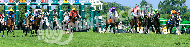 Take Warning winning at Delaware Park on 7/19/17