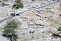 Irak 1991.Kala Diza en ruines.Iraq 1991 .Kala Diza in ruins