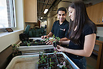 1201-14 071.CR2<br /> <br /> 1201-14 BYU Life Science Greenhouse<br /> <br /> Ivan Arrono Rodriguez and Karen Kohl work in the new Life Science Greenhouse. Friends, Working, Plants, Planting.<br /> <br /> January 11, 2012<br /> <br /> Photo by Jaren Wilkey/BYU<br /> <br /> &copy; BYU PHOTO 2011<br /> All Rights Reserved<br /> photo@byu.edu  (801)422-7322