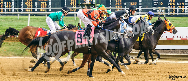 Shoppingforsilver winning at Delaware Park on 9/3/16