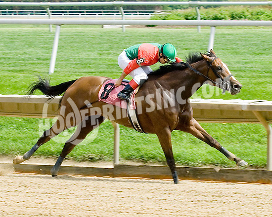 Night winning at Delaware Park on 5/1/2010