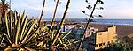 The Beach And Buildings From Ocean Park, Santa Monica, California