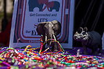 World Elephant Day - Connection Africa - State Capitol, Sacramento - August 12, 2016