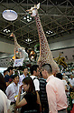 "September 5 2012, Japan - A life size giraffe between the visitors and halls of the Gift Show exhibition. The 74th Tokyo International Gift Show brings together 2,400 companies including from China, South Korea, Taiwan and Hong Kong displaying the latest gifts and daily life products, in the biggest international trade show at Tokyo Big Sight. This year the theme of the exhibition is ""Proposing 2012 Future-oriented Relaxion Gifts"". (Photo by Rodrigo Reyes Marin/AFLO).."