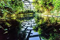 """France, Domaine de Chaumont-sur-Loire, Festival International des Jardins, Prés du Goualoup,  """"le jardin des nuées qui s'attardent"""" par Wang Shu"""
