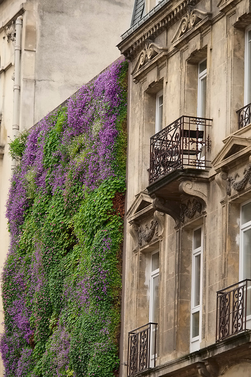 """A wall of colorful greenery """"freshen's up"""" the otherwise more traditional building architecture in Reims."""