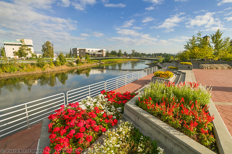 Summer flowers in Golden Heart Park in downtown Fairbanks, Alaska