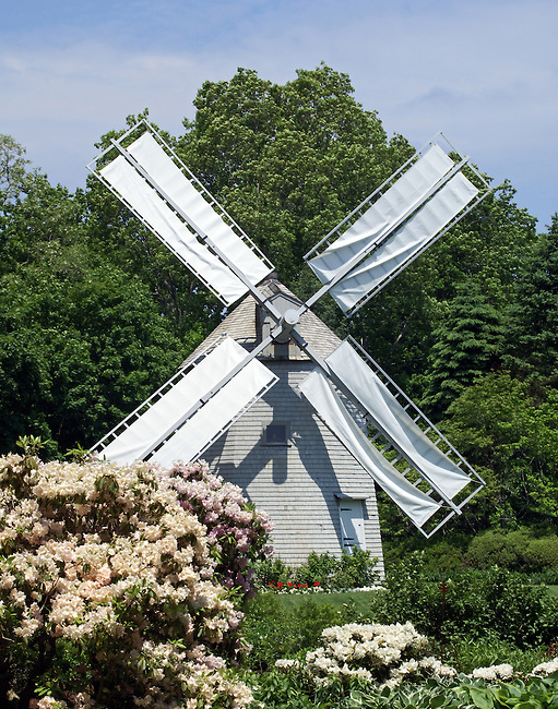An historic windmill dated 1800 stands in the beautiful Heritage Museums and Garden as a testament to times when windmills dotted the countryside.  Backed by a blue, clouded sky and lush green trees, the gray building with its white sheeted arms is a beautiful backdrop for large bushes of cream and pink flowers.