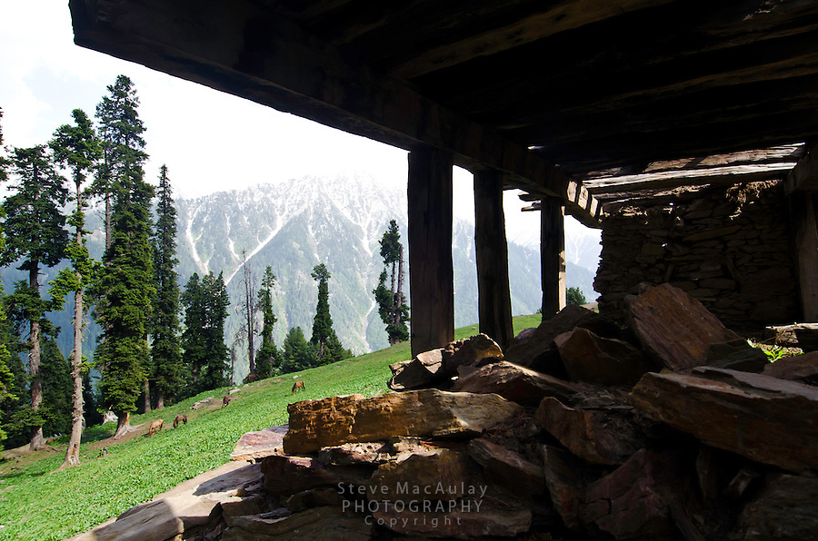 View out the windows of a ruined Bakarwal gypsy turf roof summer home, Western Himalayan Mountains, Kashmir, India..