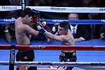Ryan Garc&iacute;a vs Jayson V&eacute;lez<br /> Gary O'Sullivan vs Berlin Abreu<br /> Marvin Cabrera vs Wilfrido Buelvas<br /> <br /> Lugar: StubHub Center, Carson, California.