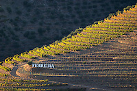 vineyards a quinta ferreira sign douro portugal