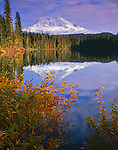 Gifford Pinchot National Forest, WA<br /> Mount Adams and reflections on Taklakh Lake
