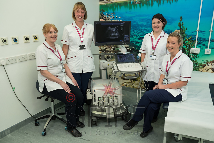 Pictured from left are Angela Staley, Vanessa Waspe, Lauren Padgett and Clare Cormell