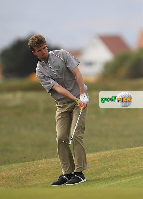Sean Flanagan (Co. Sligo) on the 13th green during Round 2 of the Flogas Irish Amateur Open Championship at Royal Dublin on Friday 6th May 2016.<br /> Picture:  Thos Caffrey / www.golffile.ie
