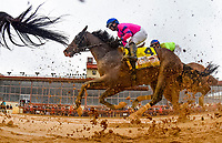 CHARLES TOWN, WV - APRIL 22: Matt King Coal #4, ridden by Horacio Karamanos, follows the pack en route to finishing second in the Charles Town Classic on Charles Town Classic Day at Charles Town Races and Slots on April 22, 2017 in Charles Town, West Virginia (Photo by Scott Serio/Eclipse Sportswire/Getty Images)
