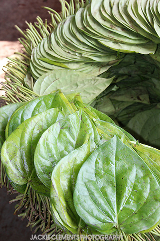 A betel leaf is used to wrap chopped betel nuts and spices, which is then chewed for its euphoric and energising effect.