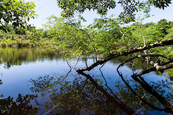 An inland lagoon on Guanahacabibes Peninsula, an excellent location for birdwatching. Cuba