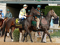 """October 07, 2018 : #6 Blockbuster and jockey Julien Leparoux before running in the 28th running of The Dixiana Bourbon (Grade 3) $250,000 """"Win and You're In Breeders' Cup Juvenile Turf Division"""" at Keeneland Race Course on October 07, 2018 in Lexington, KY.  Candice Chavez/ESW/CSM"""