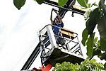 Foto: VidiPhoto<br /> <br /> ARNHEM – Medewerkers van Burgers' Zoo in Arnhem zijn vrijdag druk met werkzaamheden waar ze normaal gesproken niet of nauwelijks aan toekomen. Nu er geen publiek mag komen, wordt het park flink onder handen genomen. Met name paradepaardje het tropisch regenwoud Burgers' Bush krijgt een grote opknapbeurt. Er wordt niet alleen flink gesnoeid, maar ook worden alle 700 luchtslangen van het opblaasbare dak vernieuwd. Die zijn in de loop der jaren gaan lekken. Het dak bestaat uit luchtkussens die het gewicht van 1 meter sneeuw kunnen dragen. In Burgers' Ocean worden de ijzeren panelen voor het aquarium vervangen. Ook in andere dierentuinen wordt het personeel ingezet voor achterstallig onderhoud en een grote schoonmaak van het park.