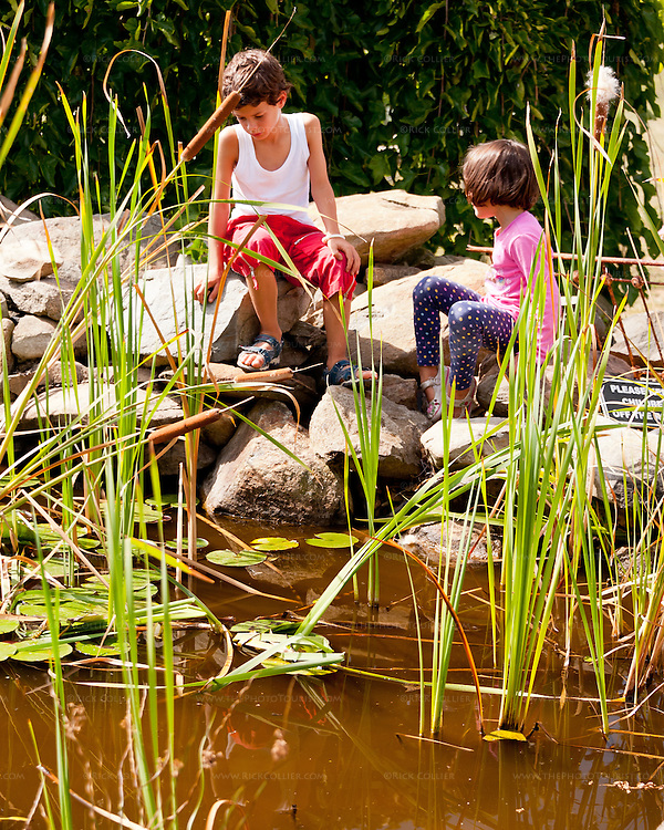 Children look for frogs and goldfish in the pond outside the tasting room at Hillsborough Vineyards.